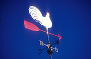 Climate, weather, direction, directions, weathervane, weathervanes, weather vane, weather vanes, wind, winds, wind direction, wind directions, bird, birds, chicken, chickens, hen, hens, bird, birds, rooster, roosters, fowl.