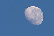 Moon, moons, the moon, circle, circles, moonrise, moonrises, sky, skies, sky scene, sky scenes, planet, planets, terrestrial planet