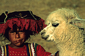 Peru, sacsayhuama, people, child, children, girl, girls, female, females, animal, animals, llama, llama, hat, hats.