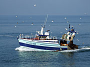 France, normandy, le havre, boat, boats, boating, fishing, fishing boat, fishing boats, commerical fishing, commercial, water, AB71,