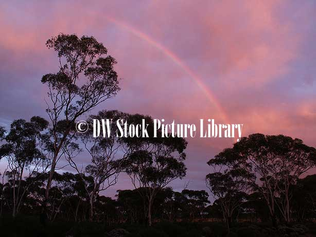Free Images Of Rainbows. FREE IMAGE OF: RAINBOW