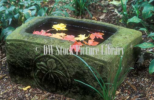 A royalty free image of small water trough with autumn for Garden pond unlimited