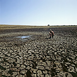 Climate, weather, drought, drought scene, drought scenes, disasters, natural disasters, Victoria, rural, rural scene, rural scenes, Vic, Australia, man, men, occupation, occupations, male, males, farmer, farmers, farm, farms, farming, farmland, farming land, mud, dried mud, cracked mud.