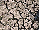 Climate, weather, drought, drought scene, drought scenes, disasters, natural disasters.