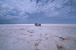 South America, bolivia, uyuni, salt, evaporation, lake, lakes, salt lake, salt lakes, salar de uyuni, cloud, clouds.