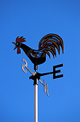 Climate, weather, direction, directions, weathervane, weathervanes, weather vane, weather vanes, wind, winds, wind direction, wind directions, bird, birds, chicken, chickens, hen, hens, hen, hens, bird, birds, rooster, roosters, fowl.