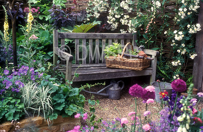 Modren Cottage Garden Plants Of To Put In Your D On Design