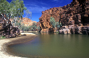 Australia, NT, Northern Territory, gorge, gorges, macdonnell, macdonnell ranges, cliff, cliffs, water, tree, trees, eucalyptus, eucalyptus tree, eucalyptus trees, gum tree, gum trees.