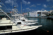 Caribbean, the caribbean, carribean islands, barbados, bridgetown, river, rivers, constitution river, constitution, boat, boats, boating, moored, moored boat, moored boats, mooring, moorings, marina, marinas, FF25,