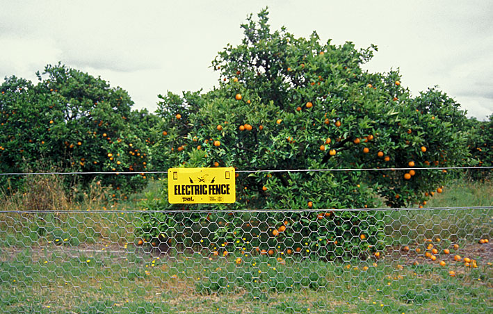 Electric - Fence suppliers and fencing supplies Victoria, Australia