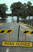 Australia, flood, floods, flooding, flooded, water, disasters, road, roads, sealed, sealed road, sealed roads, sign, signs, barricade, barricades, barricading, roadblock, roadblock, roadblocks, road block, road blocks.