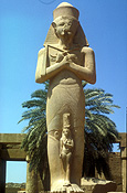 Egypt, luxor, temple, temples, statue, statues, ramses, ramses II, architecture, egyptian.