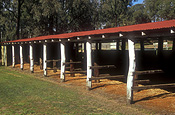 Australia, queensland, qld, wondai, horse, horses, stable, stables, roof, roofs, rooves.