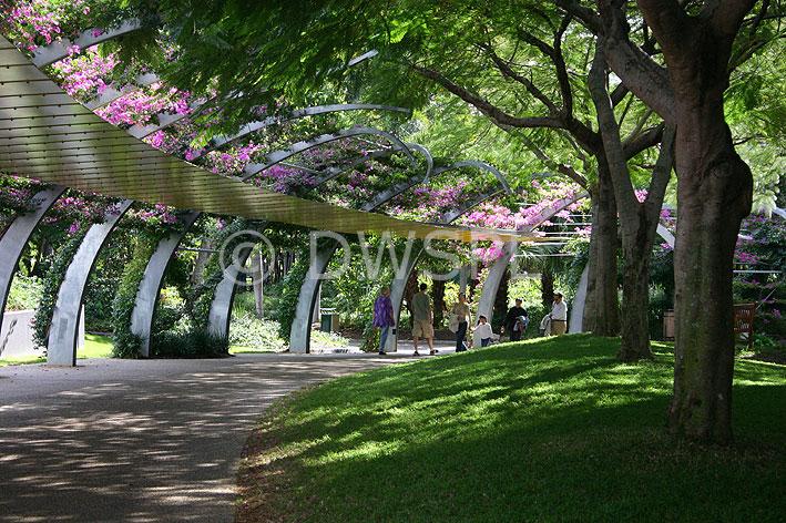 Gardens  Southbank  Brisbane  Queensland  Australia