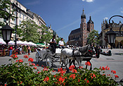 Poland, Cracow, krakow, architecture, church, churches, religion, religious, religious building, religious buildings, st mary, saint mary, church of st mary, church of saint mary, saint, saints, horse, horses, animal, animals, carriage, carriages, horse and carriage, FF25,